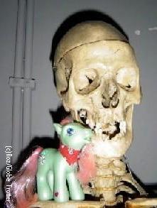 minty-skeleton.jpg